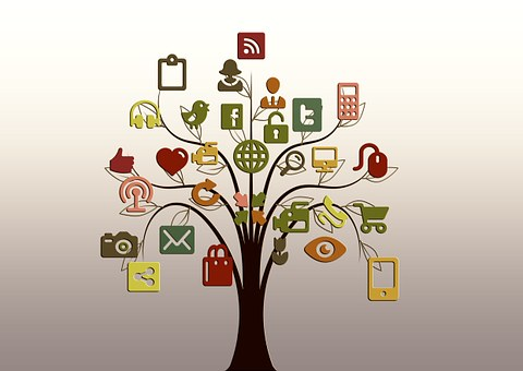 link to websites and subscriptions, tree with apps on it