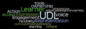 UDL wordle with words that represent UDL concepts