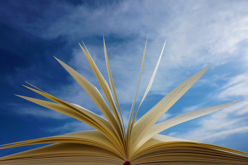 A Book, Pages, Read, Training, Novel, Literature